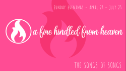 Song of Songs – Part 2 – Love Delights