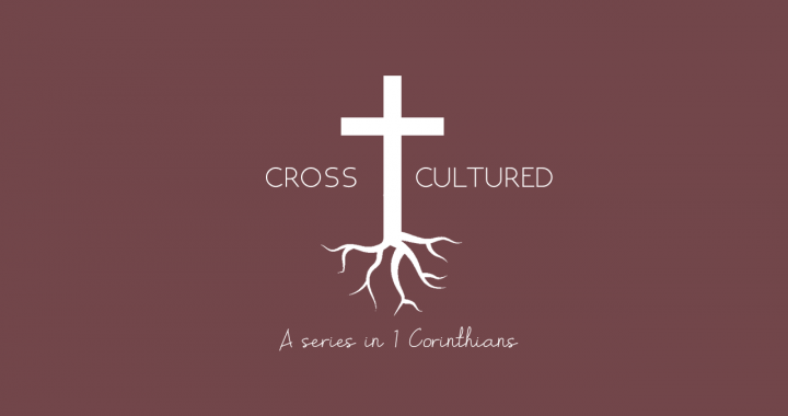 Cross shaped discipline